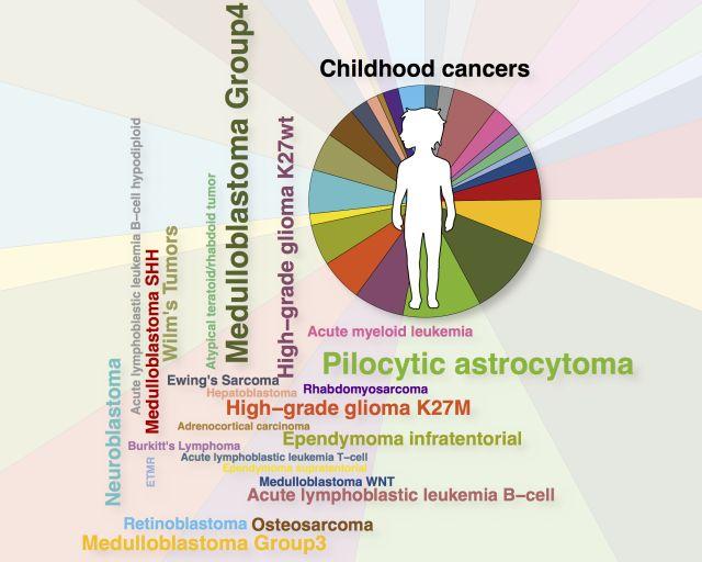 Europaweite Register-Studie zeigt den Nutzen der Krebsgenomsequenzierung für krebskranke Kinder