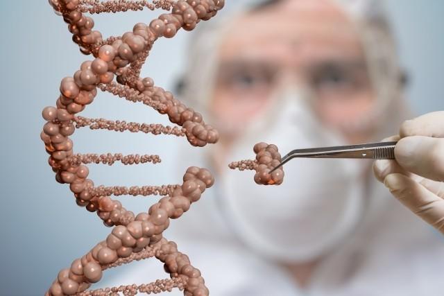 DNA-Reparatur reaktivieren – diabetische Spätschäden verhindern