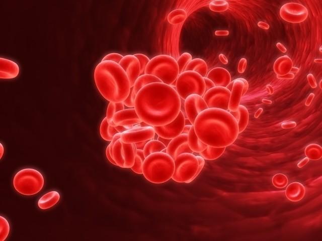 ISTH-Kongress 2020: Daten zu Edoxaban bei VTE zeigen niedrige Rate von Blutungen und VTE-Ereignissen