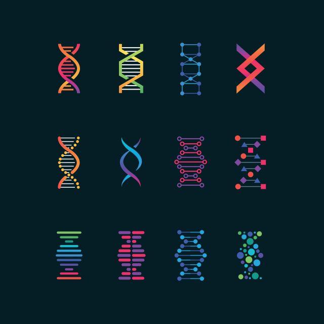 Neues potenzielles Ziel für personalisierte Medizin: viersträngigen DNA-Strukturen bei Brustkrebs