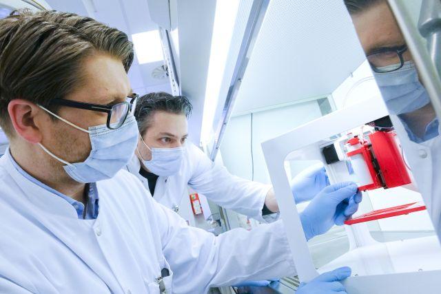 Herz-Bypässe aus dem Biodrucker: Kieler Forscher drucken 3D-Blutgefäße
